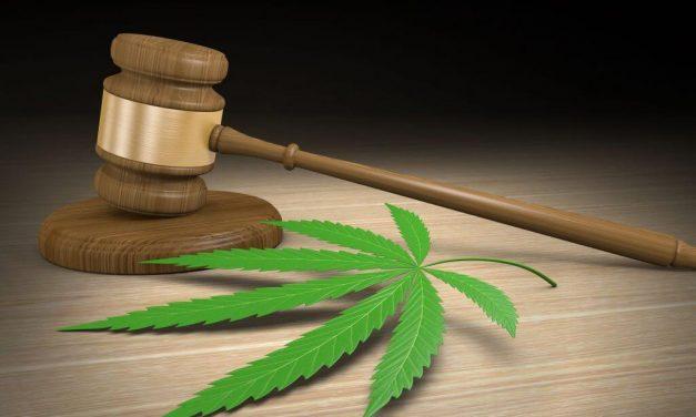 Green Thumb motion nixed as Arkansas cannabis licensing dispute continues