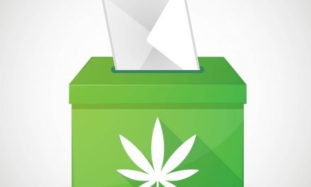 Montana adult-use cannabis legalization initiative certified for November ballot