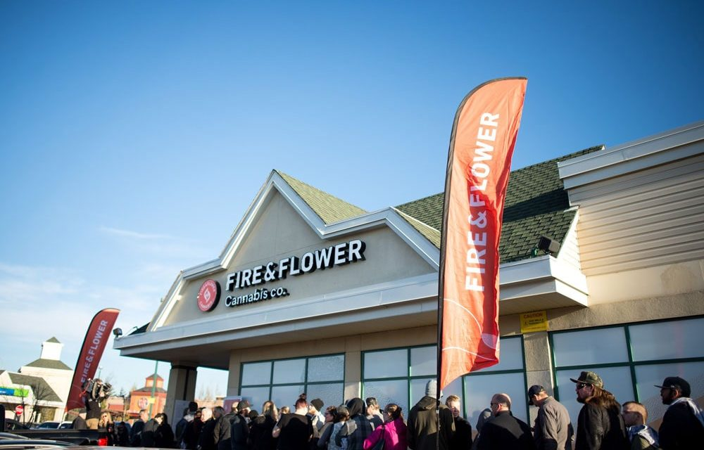 Two Canadian cannabis retail chains report sales growth, net losses