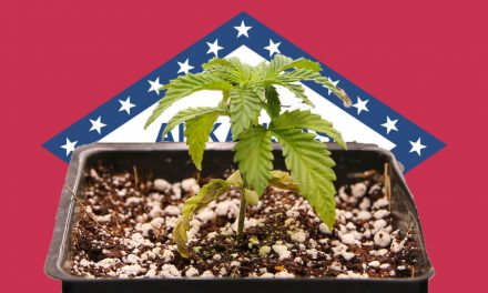 Product shortages, rising prices hit Arkansas medical marijuana market